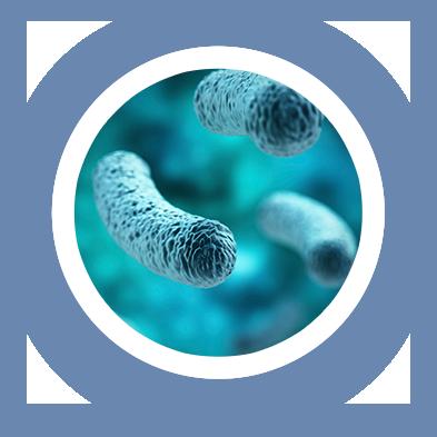 legionella testing laboratories